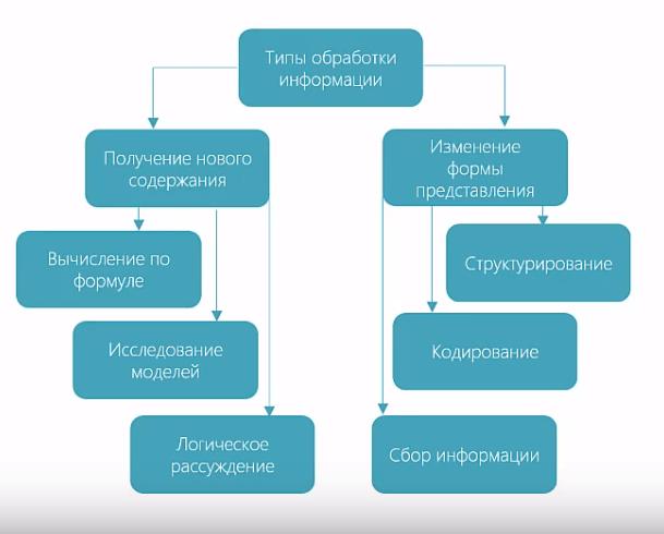 информационные процессы графы